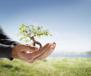 団体信用保険とは何ですか?